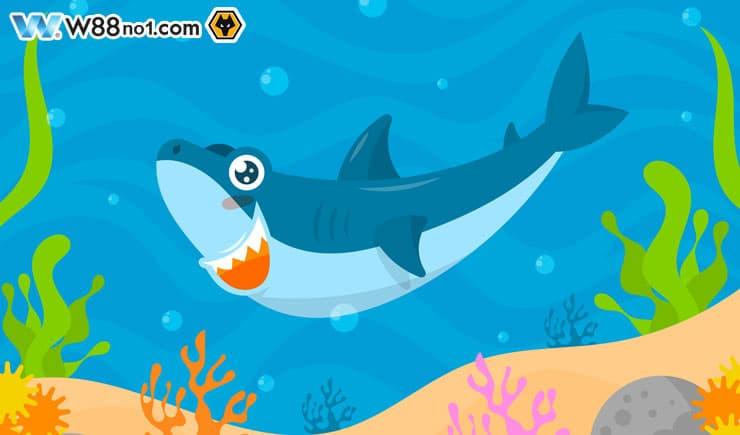 Khám phá cách chơi bắn cá Momo Fishing hấp dẫn tại nhà cái